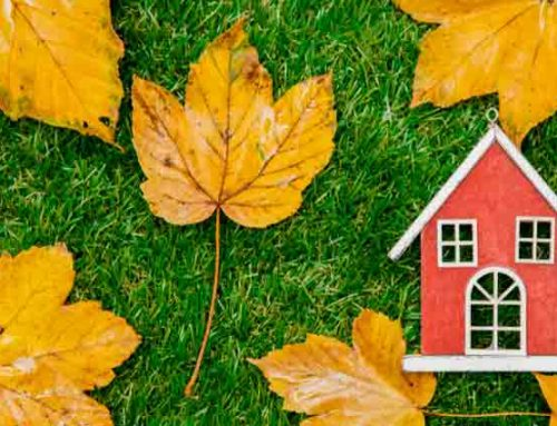 4 property maintenance tips for buy-to-let landlords this autumn