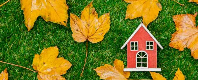4-property-maintenance-tips-for-buy-to-let-landlords-this-autumn
